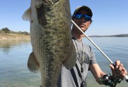 extremadura-monsters-black-bass 24