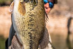 extremadura-monsters-black-bass 32