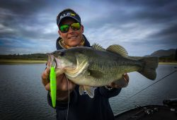 extremadura-monsters-black-bass 33
