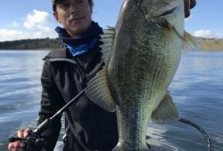 extremadura-monsters-black-bass 6