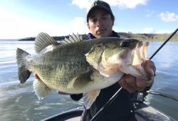 extremadura-monsters-black-bass 7